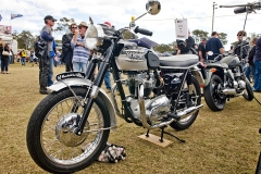 2012-Britishpre1985-WilliamJohnss1965650ccTruimphThunderbird_2